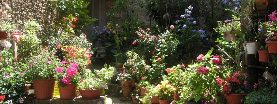 A flower-filled terrace in Anghiari