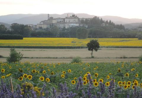 An evening view towards Monterchi from La Pieve Vecchia